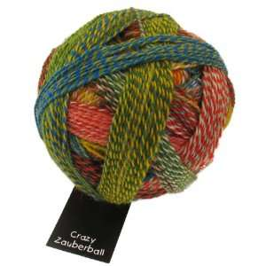 Schoppel Wolle Zauberball Crazy [Blue, Olive, Red, Yellow