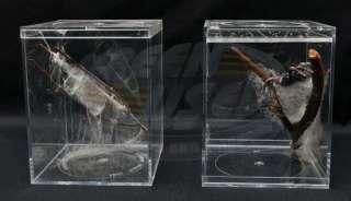 SPIDER MAN MOVIE PROP 5 SPIDER CAGES FROM SCHOOL SCIENCE TRIP