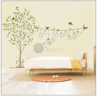Removable Photo Frame Tree Birds Art Wall Sticker Mural Vinyl Decal