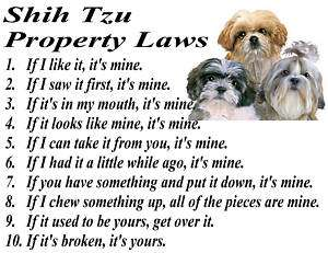 PARCHMENT PRINT SHIH TZU DOG PUPPY BREED PROPERTY LAWS