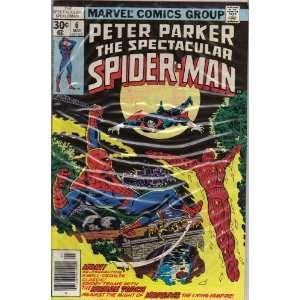 Peter Parker, Spectacular Spider Man #6 Comic Book