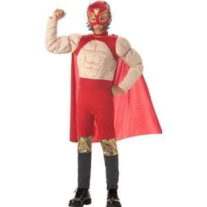Boys Mexican Luchadore Wrestler Costume (Large) Toys