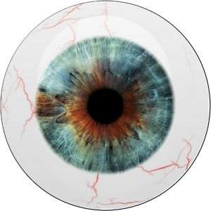 HUMAN MONSTER EVIL EYEBALL VINYL DECAL STICKERS #45**
