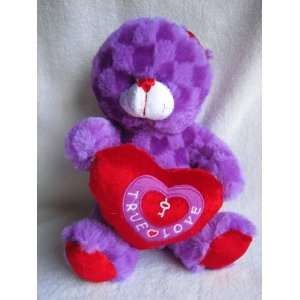 Purple Teddy Bear with True Love Heart 9 Plush Toy