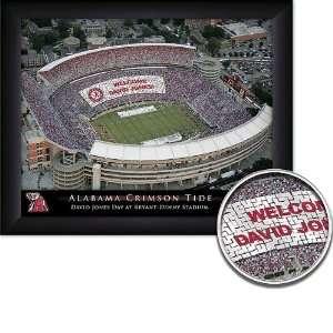 Alabama Crimson Tide Personalized Framed Stadium Print