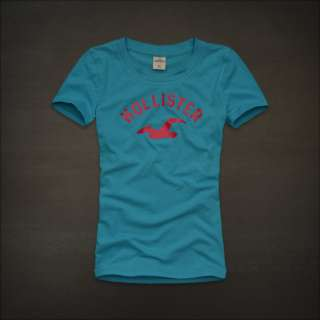 Hollister by Abercrombie womens Hobson Park Graphic Tee T Shirt NWT