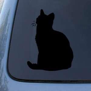 AMERICAN SHORTHAIR   Cat   Vinyl Decal Sticker #1486  Vinyl Color