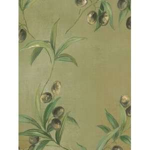 Oliva Trail Green Wallpaper in Olive Grove  Home