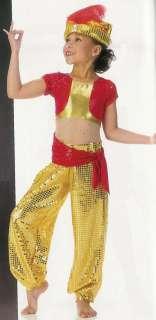 GENIE HAREM Aladdin Dance Halloween Costume SZ CHOICES