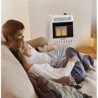 Vent Free Natural Gas Wall Heater~Radiant Room Heat