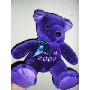 Purple Teddy Bear Plush Toy Stuffed Animal ~ Class of 2003