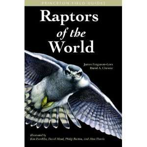 Raptors of the World (Princeton Field Guides) [Paperback
