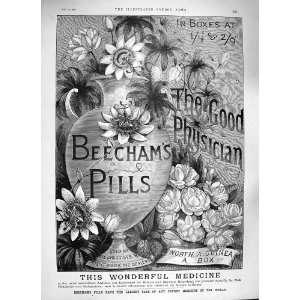 BEECHAMS PILLS MEDICINE DEALERS