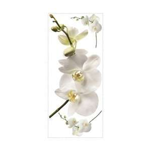 Room Mates White Orchid Peel and Stick Wall Decal Decor