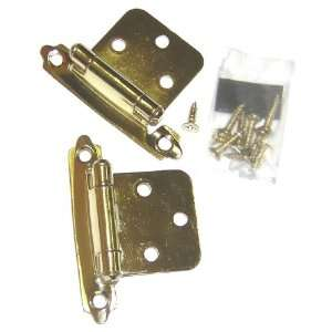 concealed Cabinet Hinge, Flush, Polished Brass Plated, self closing