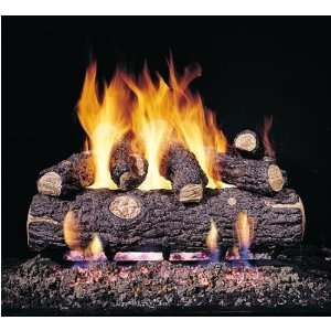 Vented Propane Gas Log Set W/ G45 Burner And Variable Flame Remote